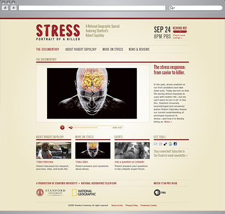 stanford_killer_stress